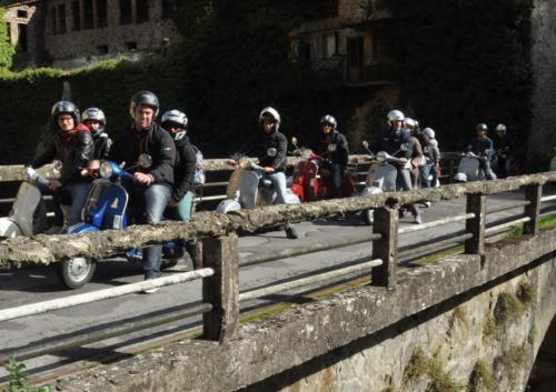 18-VespaFungata (21.10.2012)