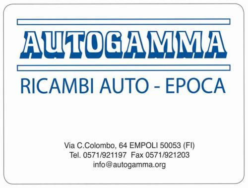 autogamma ricambi auto